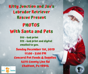 Santa Photos with Pets! @ Santa Photos with your Pets!